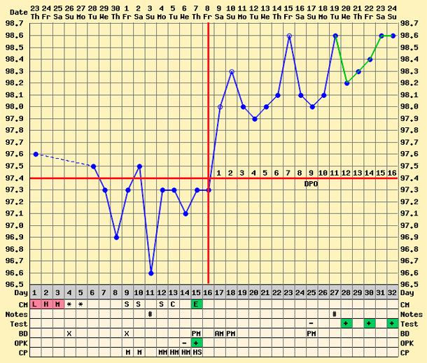 График овуляции.